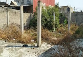 Foto de terreno habitacional en venta en calle norte 12 , san isidro, valle de chalco solidaridad, méxico, 0 No. 01