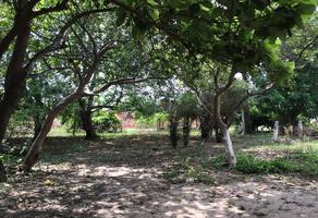 Foto de rancho en venta en calle principal , las bebelamas de san pedro, navolato, sinaloa, 19210374 No. 01
