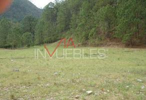 Foto de terreno comercial en venta en calle #, rincon ancho, 67330 rincon ancho, nuevo león , la ciénega, santiago, nuevo león, 7097929 No. 01
