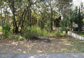 Foto de terreno habitacional en venta en calle rinconada del olmo , el palomar, tlajomulco de zúñiga, jalisco, 6405527 No. 01