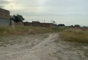 Foto de terreno habitacional en venta en calle s/n , el zapote del valle, tlajomulco de zúñiga, jalisco, 0 No. 01