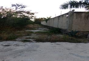 Foto de terreno habitacional en renta en calle sonora s/n , alfredo v bonfil, benito juárez, quintana roo, 0 No. 01