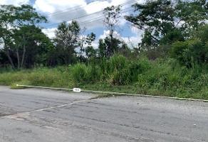 Foto de terreno habitacional en venta en calle tamarindo , petróleos mexicanos, centro, tabasco, 14163311 No. 01