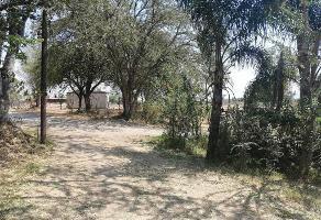 Foto de terreno habitacional en venta en calle tepeyac 20, los cedros, ixtlahuacán de los membrillos, jalisco, 11890942 No. 01
