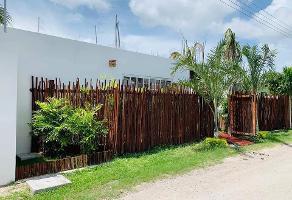 Foto de terreno habitacional en venta en calle vicente guerrero s/n , huaypix, othón p. blanco, quintana roo, 0 No. 01