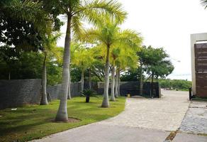 Foto de terreno habitacional en venta en calle vista destiladeras 49, 13 de septiembre, bahía de banderas, nayarit, 0 No. 01