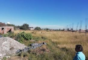 Foto de terreno industrial en renta en callej?n del cedro 7, rancho el zapote, tlajomulco de z??iga, jalisco, 6255078 No. 02