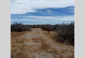 Foto de terreno habitacional en venta en calletera transpeninsular , zona central, la paz, baja california sur, 0 No. 01