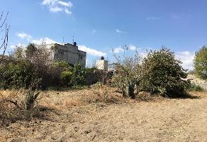 Foto de terreno habitacional en venta en  , calpan, calpan, puebla, 12844459 No. 01