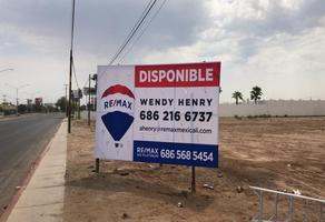 Foto de terreno comercial en renta en calzada cetys , rivera, mexicali, baja california, 6799712 No. 01