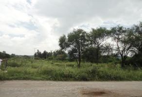 Foto de terreno habitacional en venta en calzada de los pinos , jardines de la calera, tlajomulco de zúñiga, jalisco, 6081495 No. 01