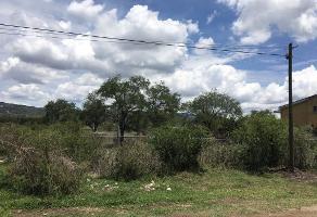Foto de terreno habitacional en venta en calzada de los pinos s/n , jardines de la calera, tlajomulco de zúñiga, jalisco, 5765545 No. 01
