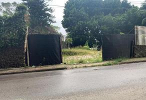 Foto de terreno habitacional en venta en calzada de los reyes 1, tetela del monte, cuernavaca, morelos, 0 No. 01