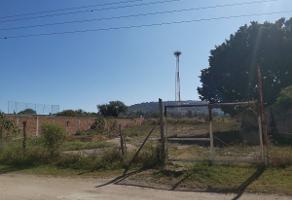 Foto de terreno habitacional en venta en calzada de los robles , jardines de la calera, tlajomulco de zúñiga, jalisco, 14163548 No. 01