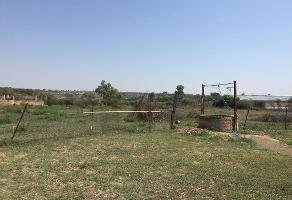 Foto de rancho en venta en calzada del colorin 9, jardines de la calera, tlajomulco de zúñiga, jalisco, 0 No. 01
