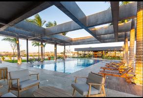 Foto de terreno habitacional en venta en  , camara de comercio norte, mérida, yucatán, 11596799 No. 02