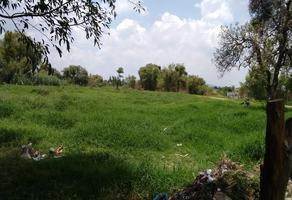 Foto de terreno comercial en venta en camichin 102, el centarro, tlajomulco de zúñiga, jalisco, 0 No. 02