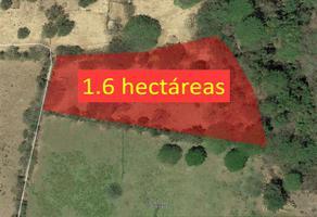 Foto de terreno comercial en venta en camino 1, el chanal, colima, colima, 7226643 No. 01