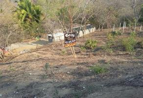Foto de terreno habitacional en venta en camino a cuatunalco sin numero , san pedro pochutla centro, san pedro pochutla, oaxaca, 3623259 No. 01