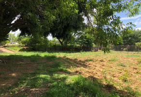Foto de terreno habitacional en venta en camino a el potrero , san isidro monjas, santa cruz xoxocotlán, oaxaca, 0 No. 01
