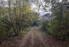 Foto de terreno habitacional en venta en camino a la chigulera , la chihuilera, oaxaca de juárez, oaxaca, 17383993 No. 01