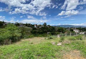 Foto de terreno habitacional en venta en camino a la chigulera , la chihuilera, oaxaca de juárez, oaxaca, 0 No. 01