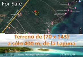 Foto de terreno comercial en venta en camino a la laguna , bacalar, bacalar, quintana roo, 14906192 No. 01
