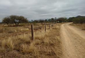 Foto de rancho en venta en camino a los tanquitos numero, armadillo de los infante, armadillo de los infante, san luis potosí, 15723259 No. 01