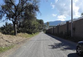 Foto de terreno habitacional en venta en camino a muyutan , campo sur, tlajomulco de zúñiga, jalisco, 2768873 No. 01