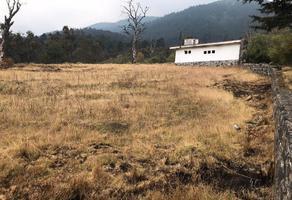 Foto de terreno habitacional en venta en camino a ojo de agua , santo tomas ajusco, tlalpan, df / cdmx, 0 No. 01