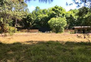 Foto de terreno habitacional en venta en camino a peña blanca s/n , peña blanca, valle de bravo, méxico, 0 No. 01