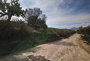 Foto de terreno habitacional en venta en camino a san bartolo , san juan tilcuautla, san agustín tlaxiaca, hidalgo, 6517249 No. 01