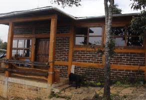 Foto de casa en venta en camino a san jose buena vista , maría auxiliadora, san cristóbal de las casas, chiapas, 0 No. 01