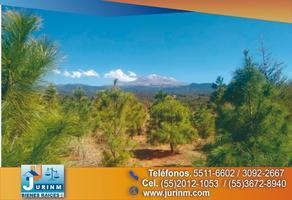 Foto de terreno habitacional en venta en camino a san lorenzo , san pedro, tlalmanalco, méxico, 14374220 No. 01