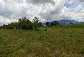 Foto de terreno habitacional en venta en camino a san pedro benito ju?rez 4, axocopan, atlixco, puebla, 0 No. 01