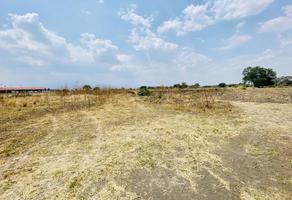 Foto de terreno comercial en venta en camino a santa rita, la magdalena sin número, axocopan, atlixco, puebla, 0 No. 01