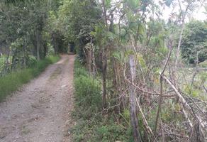 Foto de terreno habitacional en venta en camino a temazcal chimino , cofradía de suchitlán, comala, colima, 0 No. 01