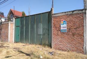Foto de terreno habitacional en venta en camino a tepetitlan , san juan, chiautla, méxico, 11479913 No. 01