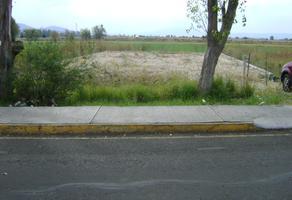 Foto de terreno habitacional en renta en camino al aeropuerto s/n , morelia (gral. francisco j. mujica), álvaro obregón, michoacán de ocampo, 12053757 No. 01