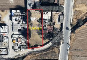 Foto de terreno habitacional en venta en camino al arrollo s/n , san felipe tlalmimilolpan, toluca, méxico, 17263229 No. 01