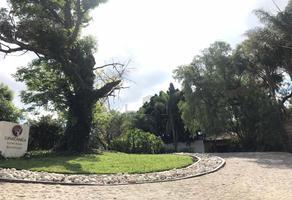 Foto de terreno habitacional en venta en camino al cerril s/n la cabrera., potrero chico, atlixco, pue. , metepec, atlixco, puebla, 18671736 No. 01