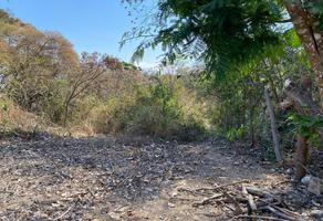 Foto de terreno habitacional en venta en camino al cerro de mactumatza , matumatza, tuxtla gutiérrez, chiapas, 0 No. 01