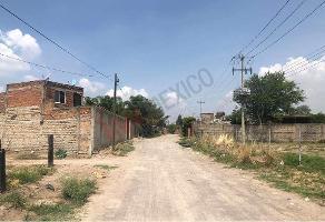 Foto de terreno habitacional en venta en camino al molino , el centarro, tlajomulco de zúñiga, jalisco, 0 No. 01
