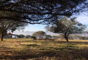 Foto de terreno habitacional en venta en camino al monte sn , villa corona centro, villa corona, jalisco, 3064475 No. 01