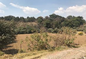 Foto de terreno habitacional en venta en camino al panteon , santa cecilia tepetlapa, xochimilco, df / cdmx, 18431257 No. 01