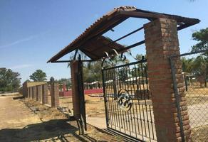 Foto de terreno habitacional en venta en camino antigua estación rincón de romos , rincón de romos centro, rincón de romos, aguascalientes, 0 No. 01