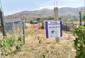Foto de terreno habitacional en venta en camino antiguo , los ángeles, santa cruz xoxocotlán, oaxaca, 0 No. 01