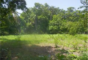 Foto de terreno habitacional en venta en camino carretero 0, santo domingo tehuantepec centro, santo domingo tehuantepec, oaxaca, 0 No. 01