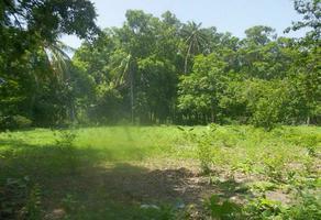 Foto de terreno habitacional en venta en camino carretero , san pablo, santo domingo tehuantepec, oaxaca, 0 No. 01
