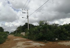 Foto de terreno habitacional en venta en camino de cholul a tixcuytún , cholul, mérida, yucatán, 0 No. 01